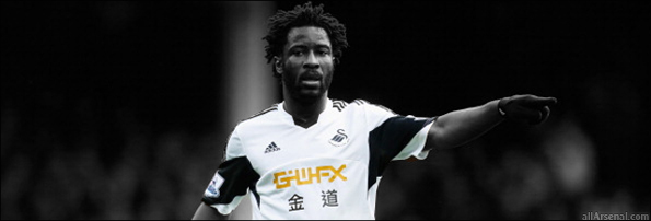 Wilfred Bony Large